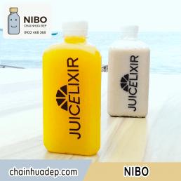 Chai-nhua-300ml-tam-giac