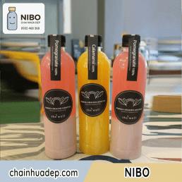 Chai-nhua-500ml-tron-ngan